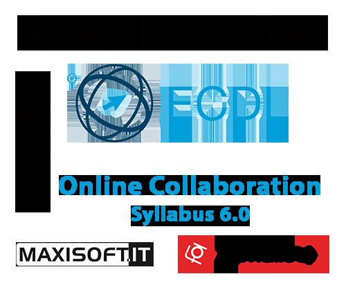 Codice simulazioni Maxisoft ONLINE COLLABORATION 6.0